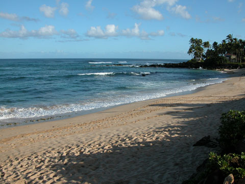 Laniakea Beach Hawaii Safety