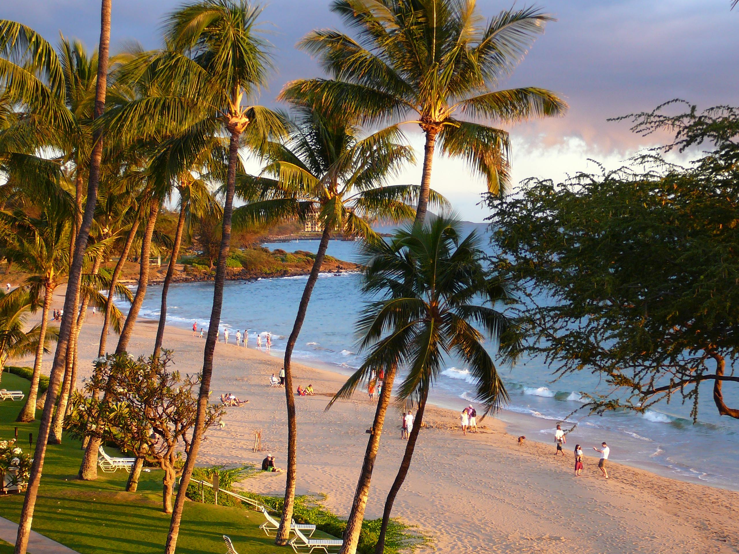 "Maui Kihei Shore<br />Photo <a href=""//creativecommons.org/licences/by-sa/3.0/"" class=""cc-small"" target=""_blank""><img typeof=""foaf:Image"" class=""image-style-none"" src=""https://i.creativecommons.org/l/by-sa/3.0/80x15.png"" width=""80px"" height=""15px"" alt=""Creative Commons Licence"" /></a> <a href=""http://www.flickr.com/photos/49295397@N00/2637985110"">Stephen Walli</a>"