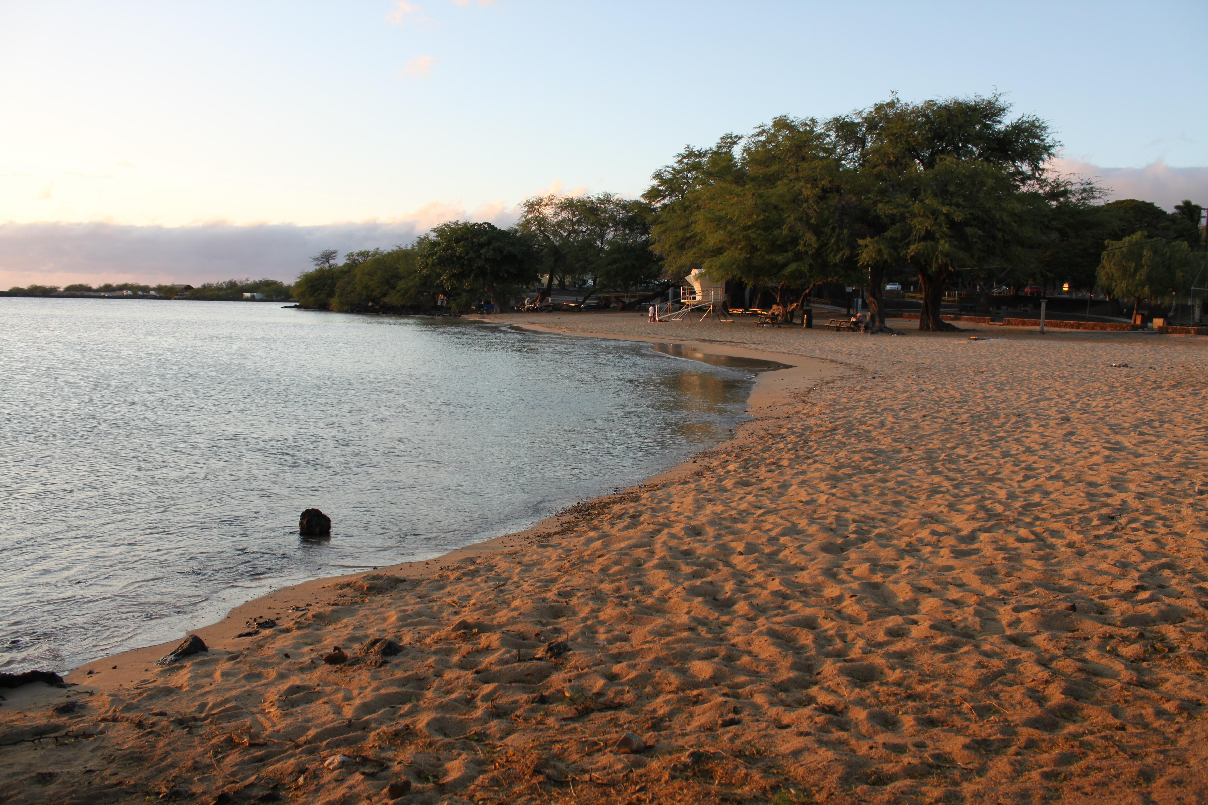 """Hawaii West Shore<br/>Photo <a href=""""//creativecommons.org/licences/by-sa/3.0/"""" class=""""cc-small"""" target=""""_blank""""><img typeof=""""foaf:Image"""" class=""""image-style-none"""" src=""""https://i.creativecommons.org/l/by-sa/3.0/80x15.png"""" width=""""80px"""" height=""""15px"""" alt=""""Creative Commons Licence"""" /></a> <a href=""""http://www.flickr.com/photos/80547277@N00/4676185999"""">Eli Duke</a>"""