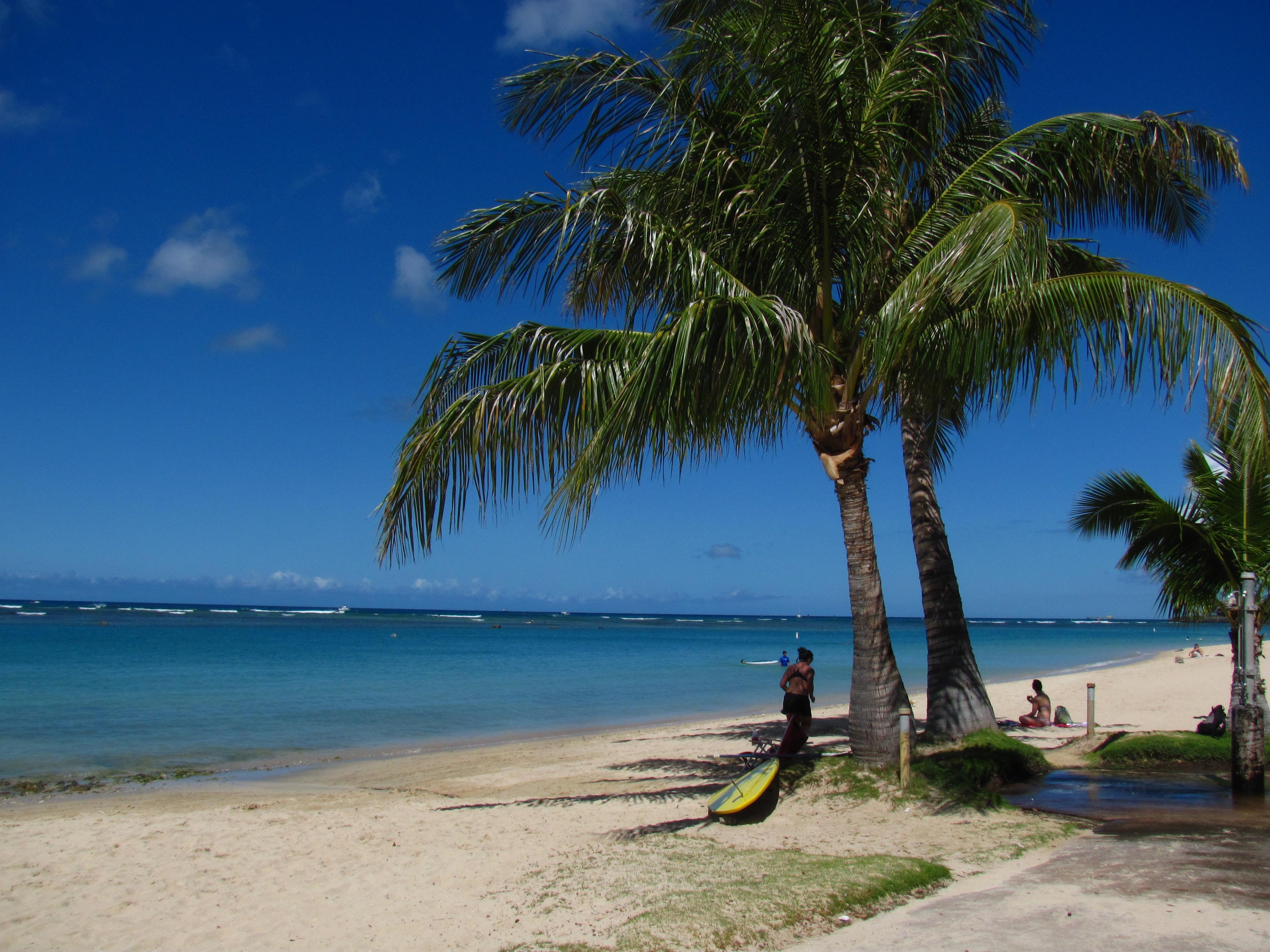 """Oahu South Shore<br/>Photo <a href=""""//creativecommons.org/licences/by-nd/3.0/"""" class=""""cc-small"""" target=""""_blank""""><img typeof=""""foaf:Image"""" class=""""image-style-none"""" src=""""https://i.creativecommons.org/l/by-nd/3.0/80x15.png"""" width=""""80px"""" height=""""15px"""" alt=""""Creative Commons Licence"""" /></a> <a href=""""http://www.flickr.com/photos/66478195@N00/4719684259"""">Loren Javier</a>"""