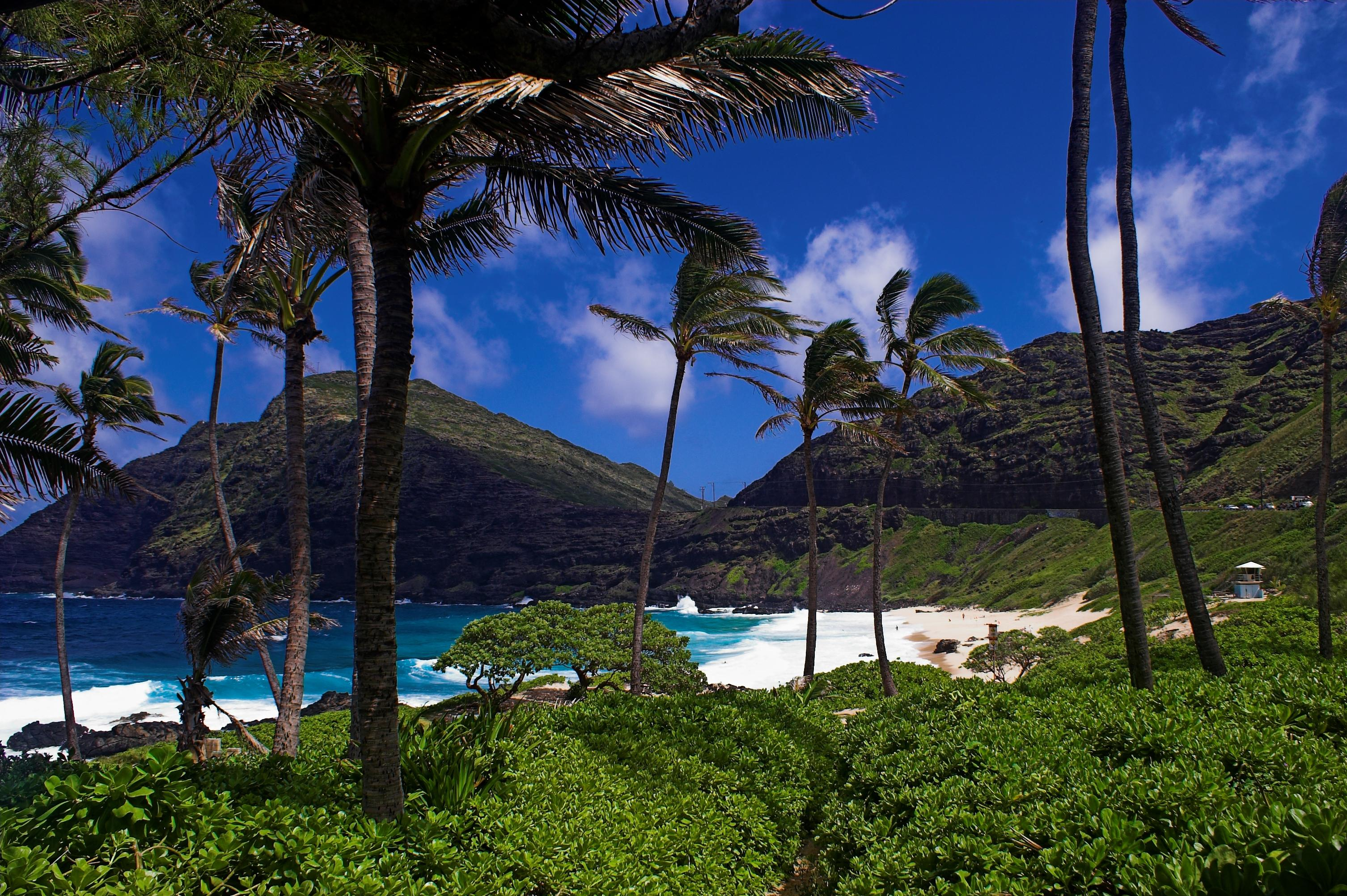 """Oahu Windward (East) Shore<br/>Photo <a href=""""//creativecommons.org/licences/by-nc-nd/3.0/"""" class=""""cc-small"""" target=""""_blank""""><img typeof=""""foaf:Image"""" class=""""image-style-none"""" src=""""https://i.creativecommons.org/l/by-nc-nd/3.0/80x15.png"""" width=""""80px"""" height=""""15px"""" alt=""""Creative Commons Licence"""" /></a> <a href=""""https://www.flickr.com/photos/72451959@N00/475099572"""">Paul Vladuchick</a>"""
