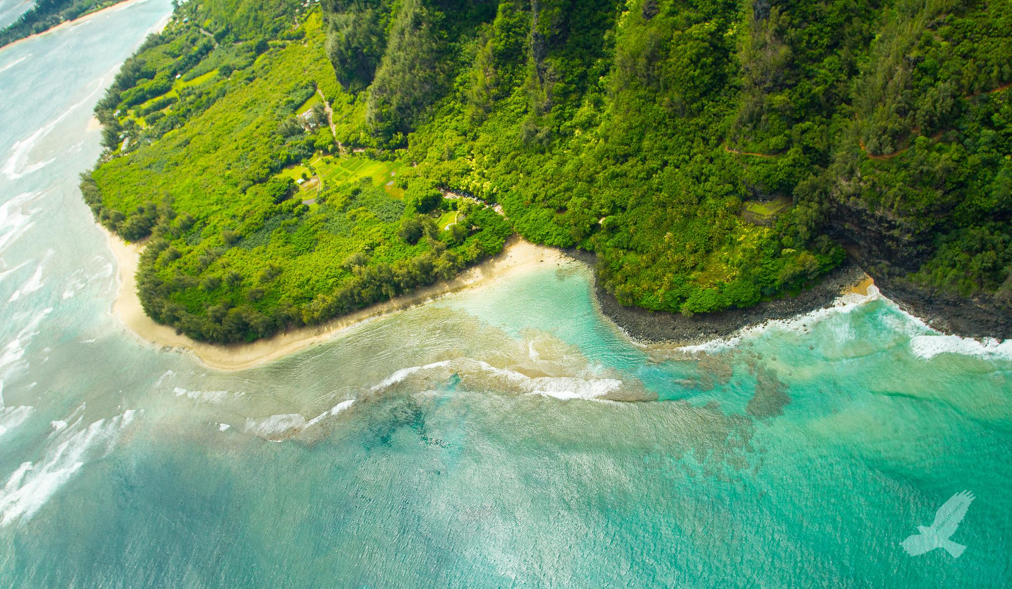 "Kauai North Shore<br />Photo <a href=""//creativecommons.org/licences/by-nc/3.0/"" class=""cc-small"" target=""_blank""><img typeof=""foaf:Image"" class=""image-style-none"" src=""//i.creativecommons.org/l/by-nc/3.0/80x15.png"" width=""80px"" height=""15px"" alt=""Creative Commons Licence"" /></a> <a href=""http://www.flickr.com/photos/91355793@N02/9094763707"">Christian Arballo</a>"